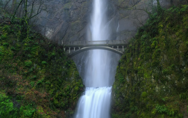 Multnomah Falls (click to view)
