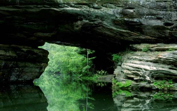 Natural Bridge Pickett State Park Tennessee (click to view)