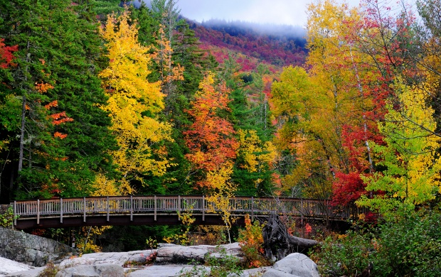 New Hampshire (click to view)
