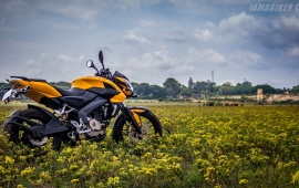 New Pulsar 200 Yellow