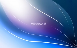 New Windows 8