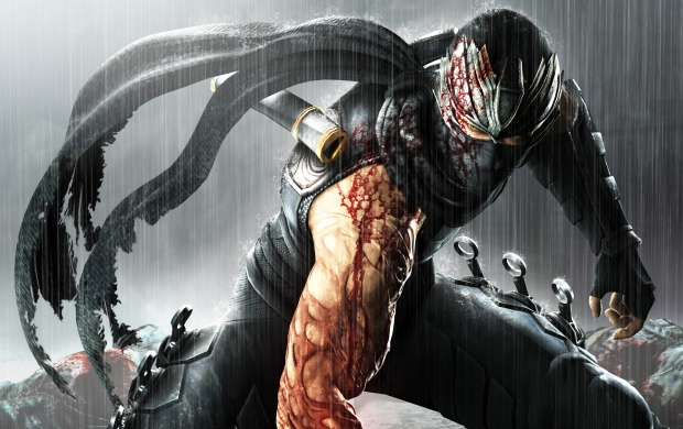 Ninja Gaiden 3 Game (click to view)