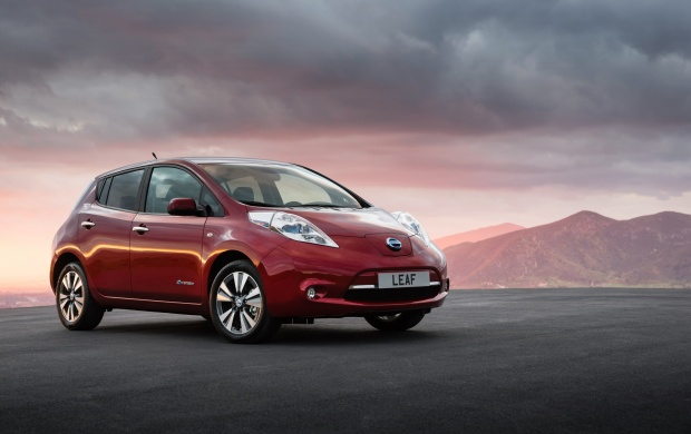 Nissan Leaf 2014 (click to view)