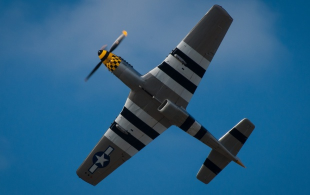 North American P-51 Mustang (click to view)
