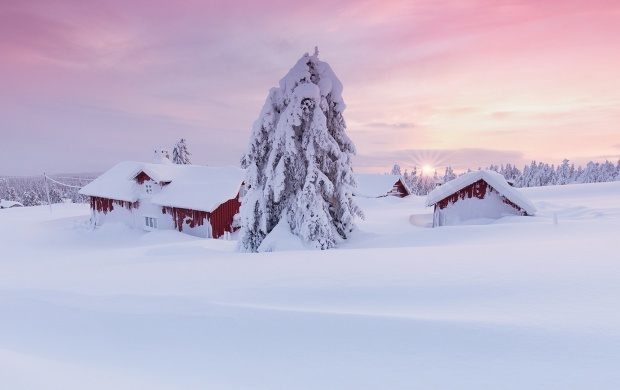 Norway Winter Snow House And Tree (click to view)