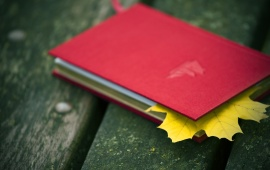 Notebook Leaffall