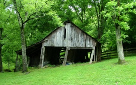 Old Forest Barn