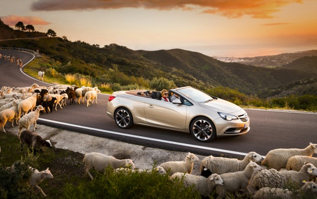 Opel Cascada 2013 (click to view)
