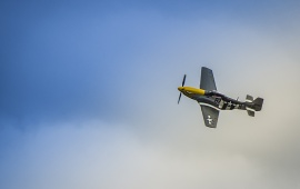 P51 Mustang The Plane
