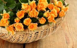 Petals Rose Basket