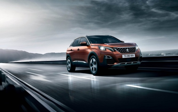 Peugeot 3008 2017 (click to view)