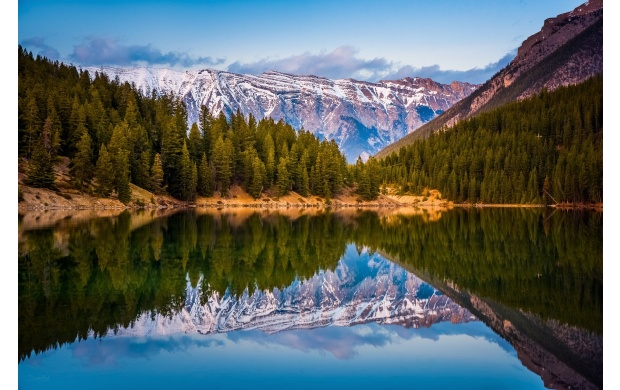 Pine Trees Lake Reflection (click to view)
