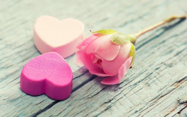 Pink Heart And Rose Flower (click to view)