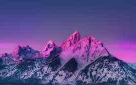 Pink Snowed Mountains