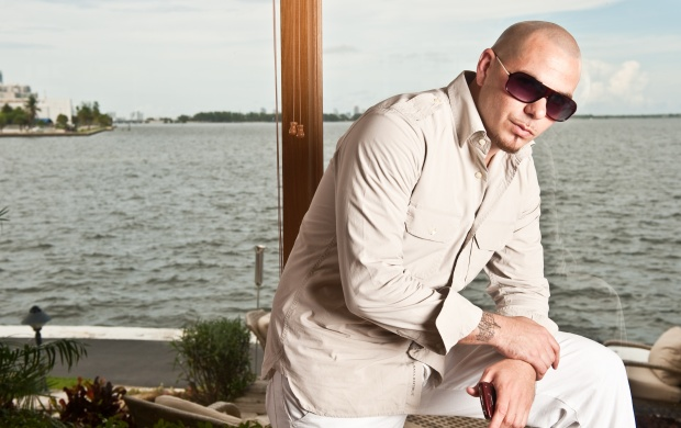 Pitbull (click to view)