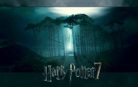 Potter and The Deathly