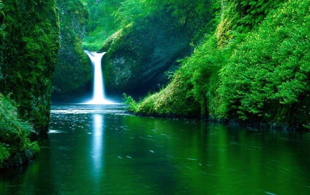 Punch Bowl Falls (click to view)