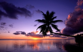 Purple Sunset in French Polynesia