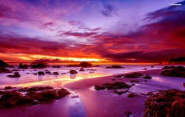 Purple Sunset on Rocky Beach