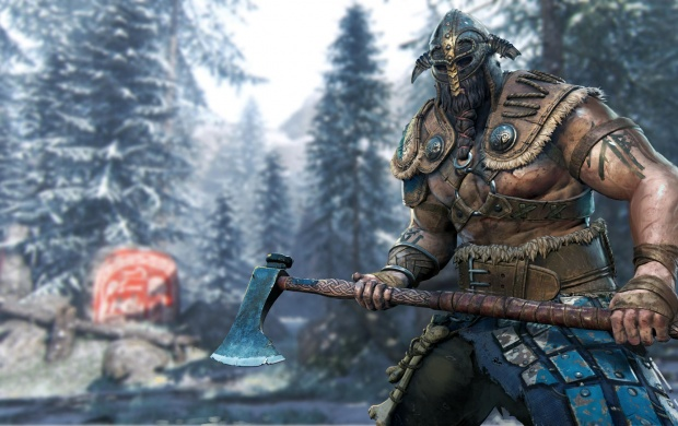 Raider For Honor (click to view)