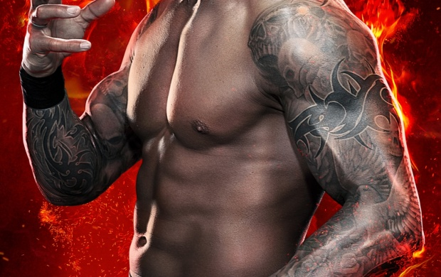 Randy Orton 2015 (click to view)