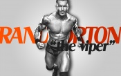 Randy Orton Gorgeous