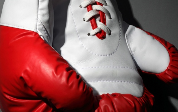 Red And White Boxing Gloves (click to view)
