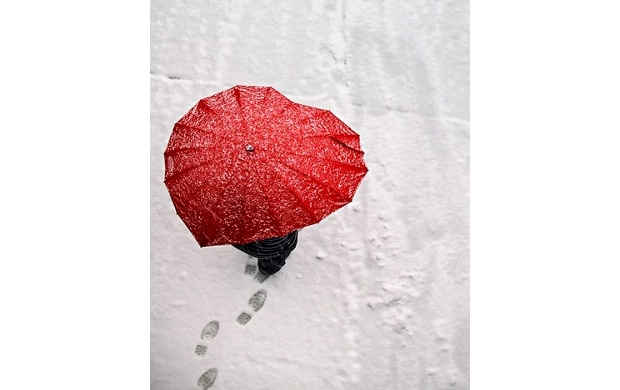 Red Heart Shaped Umbrella (click to view)