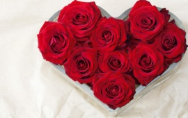 Red Roses Buds Heart