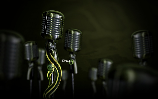 Retro Microphones Audio Jungle (click to view)
