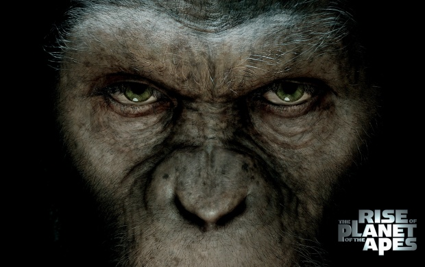 Rise of the Planet of the Apes (click to view)