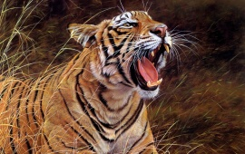 Roar Of The Jungle Tiger