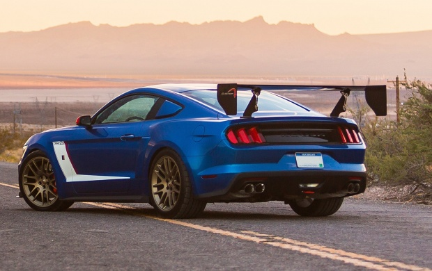 Roush Mustang Stage 3 Trak Pak 2016 (click to view)