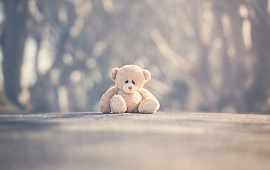Sad Alone Teddy Bear On Road