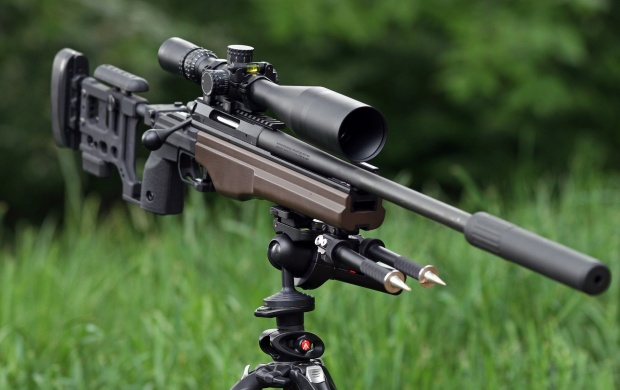 Sako TRG-22 Sniper Rifle (click to view)