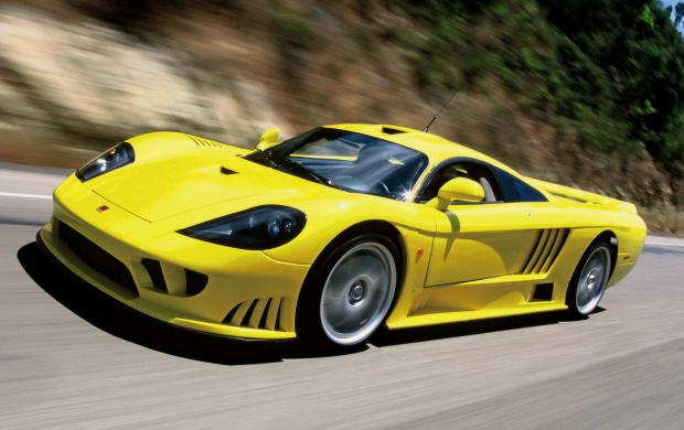 Saleen S7 (click to view)