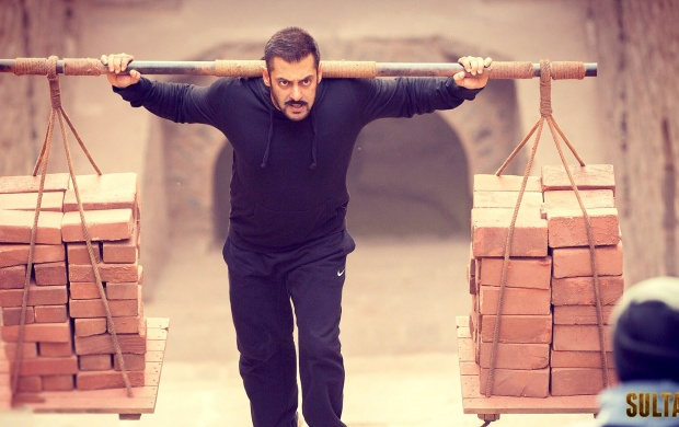 Salman Khan In Sultan Movies (click to view)
