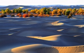 Sand Dunes With Shadows