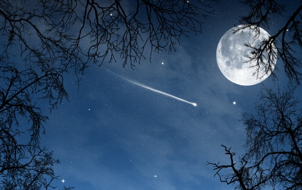 Shooting Star (click to view)