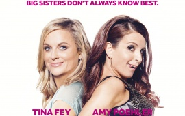 Sisters Hollywood Movie 2015