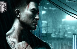 Sleeping Dogs Game