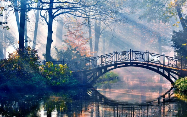 Small Forest Bridge (click to view)