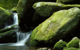 Small Waterfall And Green Rocks