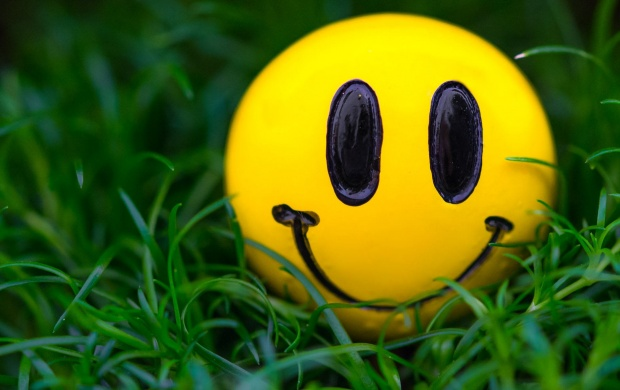 Smiley At Grass (click to view)
