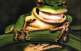 Smiley Frog
