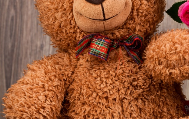 Smiley Teddy (click to view)