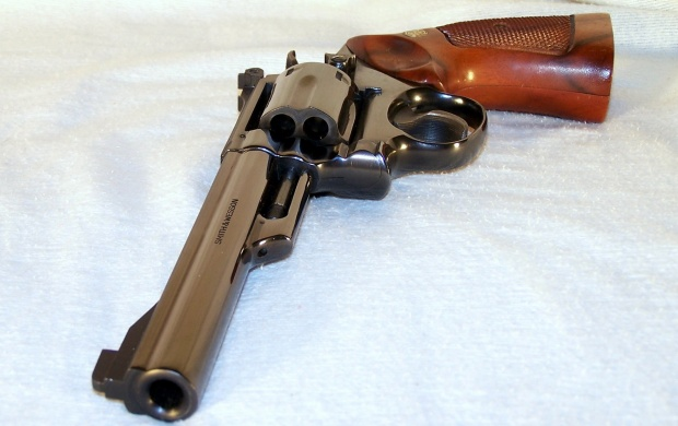 Smith & Wesson Model 19 (click to view)