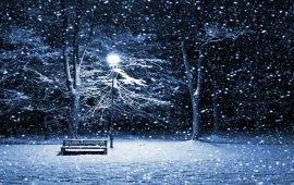 Snowing On Park Bench