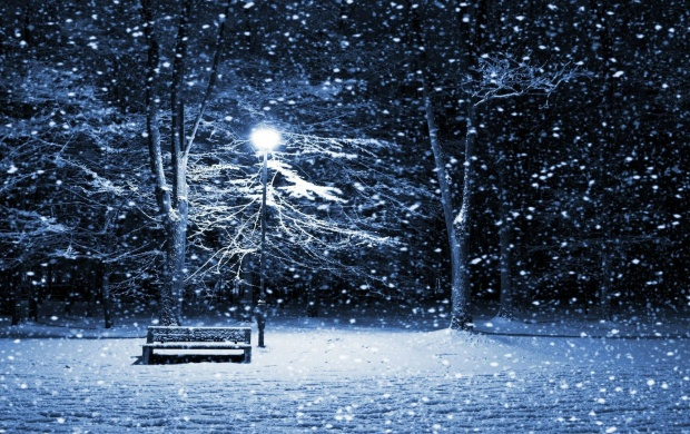 Snowing On Park Bench (click to view)