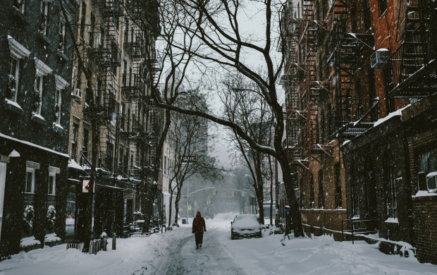 Snowy Day In New York (click to view)